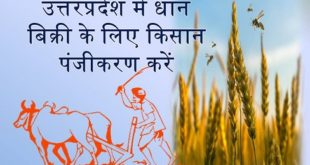 UP Kisan Registration Online Form for Farmers to Sell Paddy of Kharif