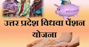 up vidhwa pension