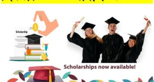 Delhi Scholarship Scheme