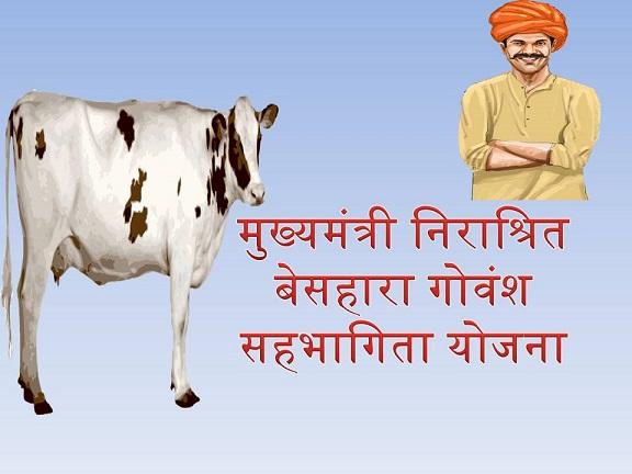 Mukhyamantri Nirashrit Besahara Govansh Sahbhagita Yojana
